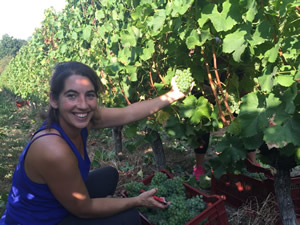Sandra's worked all year in the vines